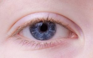 eye-2162168_640